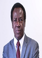 Fred Osei Annin