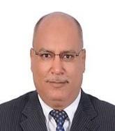 Ahmed Rammah