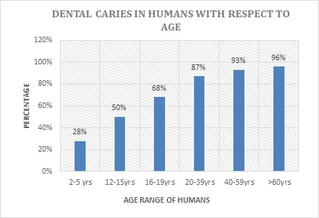 Dentistry Conferences | Dental Conferences | Euro Dentistry