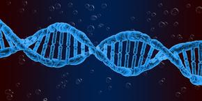 International Conference on Human Genetics and Genetic Disorders , Frankfurt,Germany