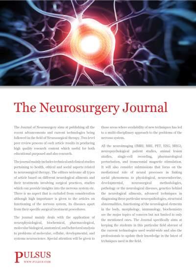 The Neurosurgery Journal
