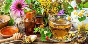 10th International Conference on Herbals, Alternative & Traditional Medicine , Osaka,Japan