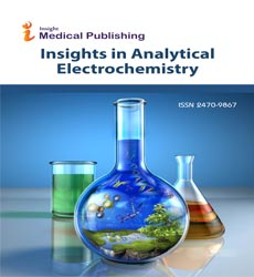 Insights in Analytical Electrochemistry