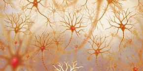 Annual Congress on  Advancements in Neurology and Neuroscience , Rome,Italy