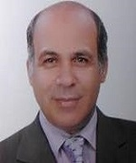 european-materials-2021-elsayed-ahmed-elnashar-329646427.jpg