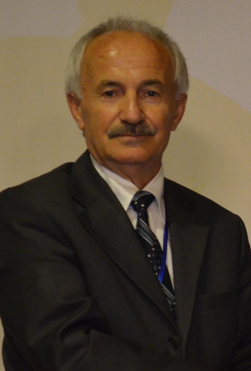 vascular-dementia-2021-dr-osman-adiguzel-833866243.jpg