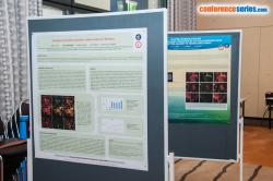 cs/past-gallery/1228/euro-immunology-2016-conference-series-llc--posters-1469698238.jpg