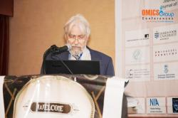 cs/past-gallery/129/nanotek-conferences-2013-conferenceseries-llc-omics-international-10-1450165535.jpg