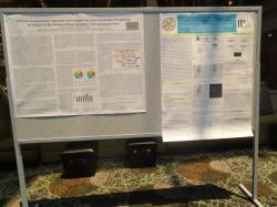 cs/past-gallery/179/proteomics-conferences-2012-conferenceseries-llc-omics-international-34-1450078150.jpg