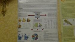 cs/past-gallery/183/earth-science-conferences-2012-conferenceseries-llc-omics-international-6-1450079633.jpg