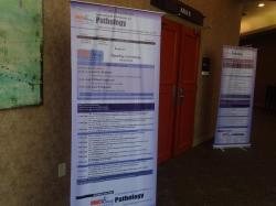 cs/past-gallery/189/pathology-conferences-2012-conferenceseries-llc-omics-international-12-1450082175.jpg