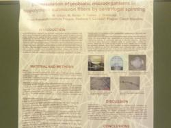 cs/past-gallery/223/probiotics-conference-2012-conferenceseries-llc-omics-international-101-1450088208.jpg