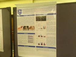 Title #cs/past-gallery/225/cell-science-conferences-2012-conferenceseries-llc-omics-international-166-1450152411