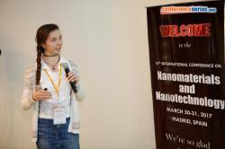 cs/past-gallery/2707/nadezhda-nebogatikova-nanomaterials-2017-9-1491555440.jpg