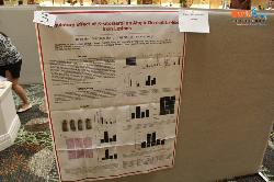 cs/past-gallery/293/translational-medicine-conference-2014--las-vegas-usa-omics-group-international-12-1442913692.jpg