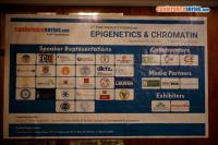 Title #cs/past-gallery/3765/2nd-international-congress-on-epigenetics-and-chromatin-nov-6-8-2017-frankfurt-germany-3-1512121889