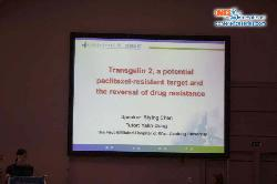 cs/past-gallery/436/european-pharma-congress--2015-valencia-spain-omics-international-13-1443018262.jpg