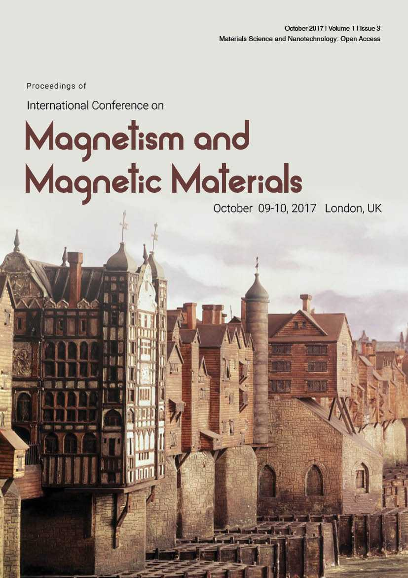 Magnetic Materials Proceedings