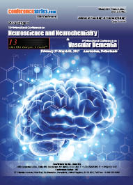 Proceedings of  NeuroScience and Vascular Dementia 2017