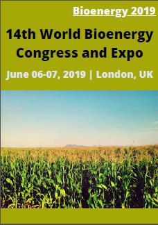 Bioenergy 2019
