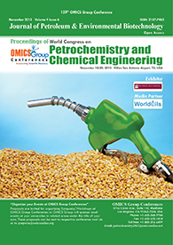 Petrochemistry 2013 Conference Proceedings