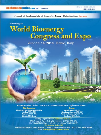 Bioenergy 2016