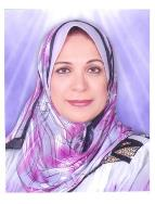 Hoda Saady Mohamedain Abdel Galil