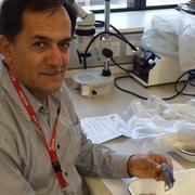Javad Ghasemzadeh