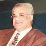 Mohamed A.Fahmy Zeid