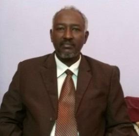 Munzir M. E. Ahmed