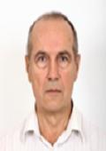 Gennady S. Luk'yanchikov