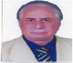 Saad M Magdy
