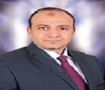 Ahmed A Melegy