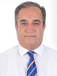 Husham  Y. M. Ali Bayazed