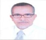 Mahmoud S Soliman