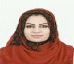 Noor Mohammed