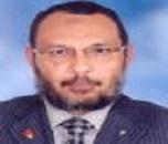Mohamed Abd-Elghany Abd-Elaziz
