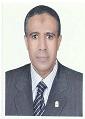 Gamal Hassan A. El-Sokkary