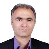 Shahrokh Makvand Hosseini