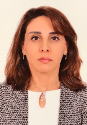 Prof. Ilham Youssry