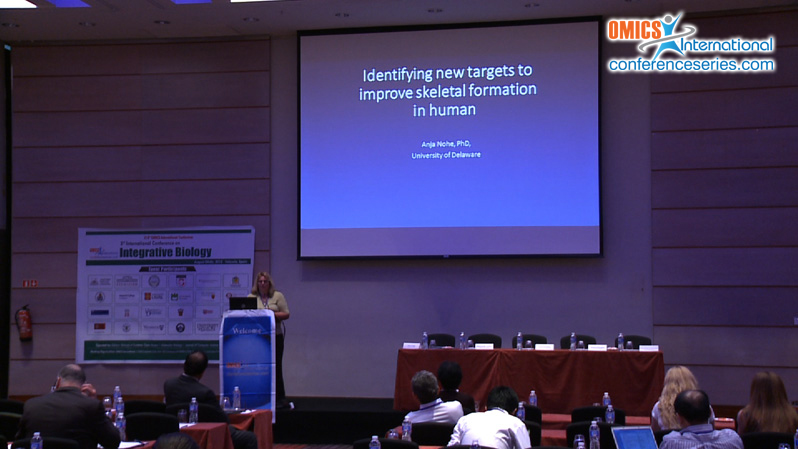Anja Nohe | OMICS International