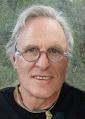 David Mesple