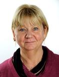 OMICS International Healthcare Summit 2016 International Conference Keynote Speaker Carina Berterö photo