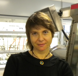 OMICS International Nanoscience 2017 International Conference Keynote Speaker Katerina Soulantica photo