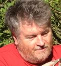 Michael K McMullen