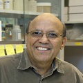 OMICS International Plant Physiology 2016 International Conference Keynote Speaker Desh Pal S. Verma photo