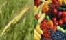 Agricultural and Food Chemistry