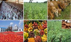 Agricultural and Industrial Byproducts- Business - new realities