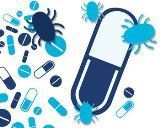 Antimicrobial Chemo Therapy