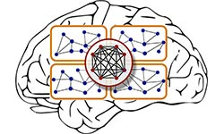 Approaches for Neural Dynamics
